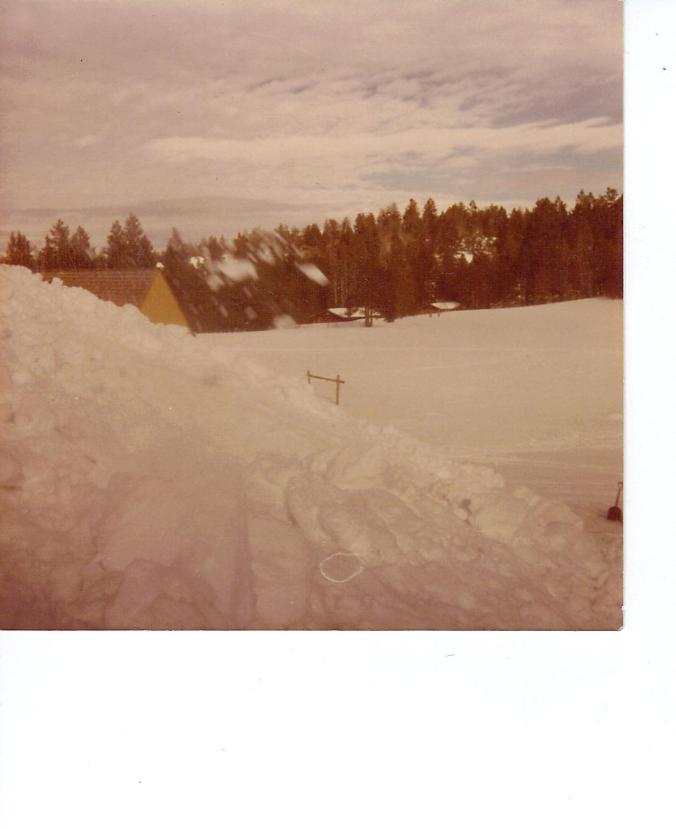 BARTLETT VIEW OF A-FRAME FROM LODGE ROOF FEB 1982