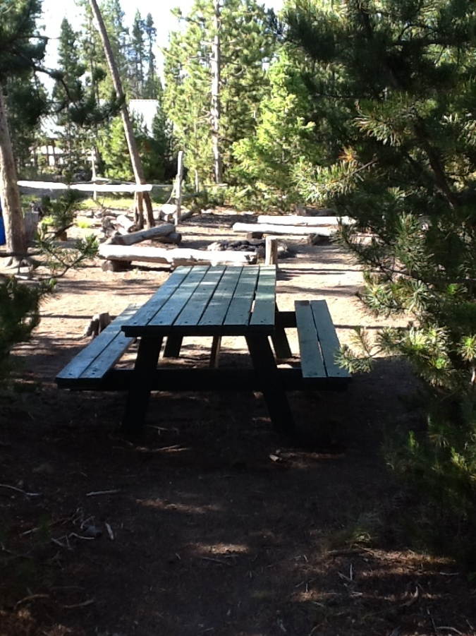 CAMPSITE WITH TABLES BEAR BOX