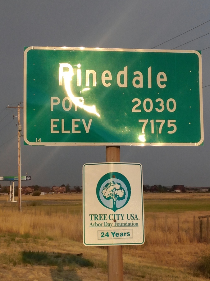 PINEDALE ENTRY SIGN
