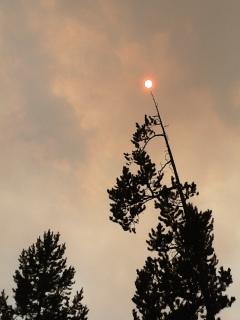 fire-and-smoke-orange-sun