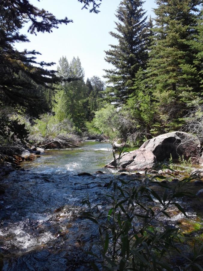 stream-beauty-4